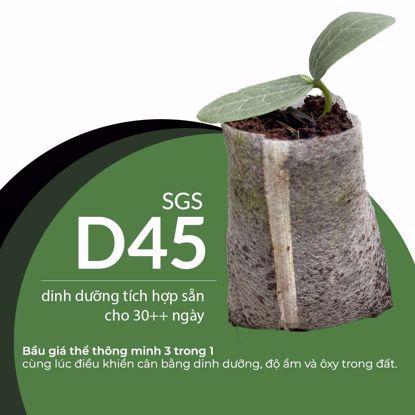 Ảnh của SGS-D45