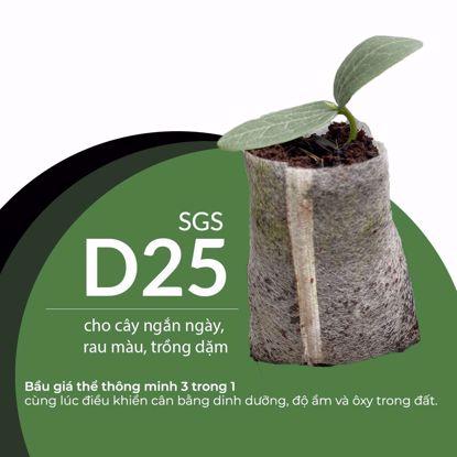Ảnh của SGS-D25